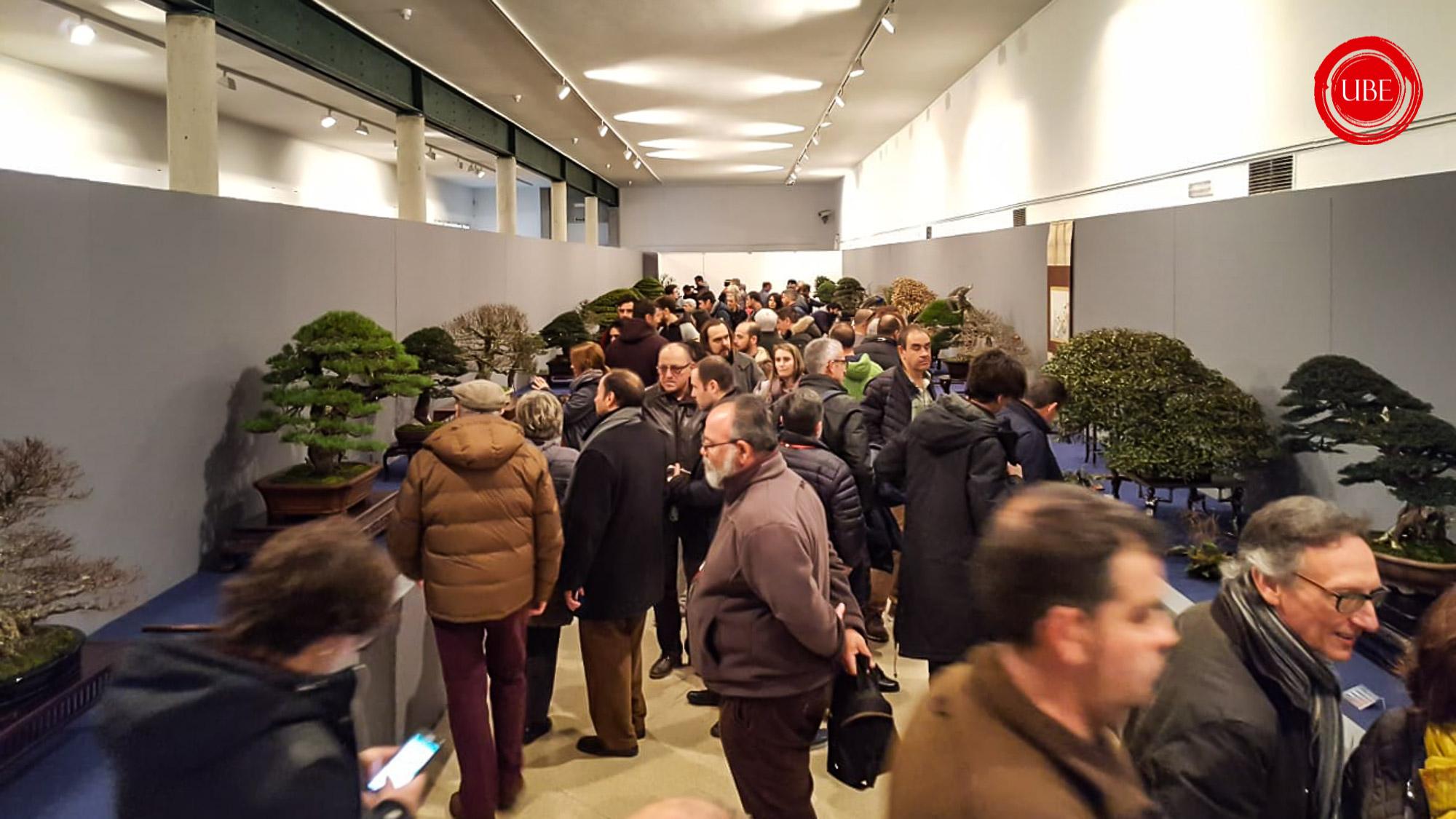 I. UBE Bonsai Convención 2019 - Galería
