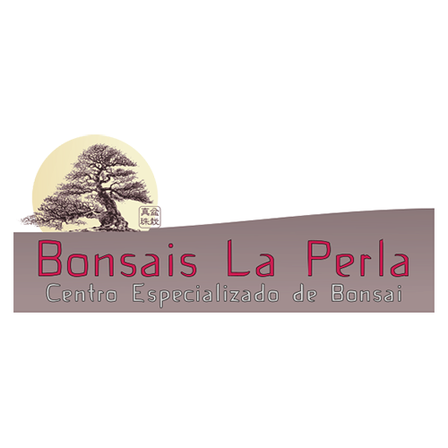 Bonsai La Perla