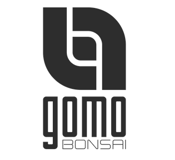 Gomo Bonsai - Manuel Germade